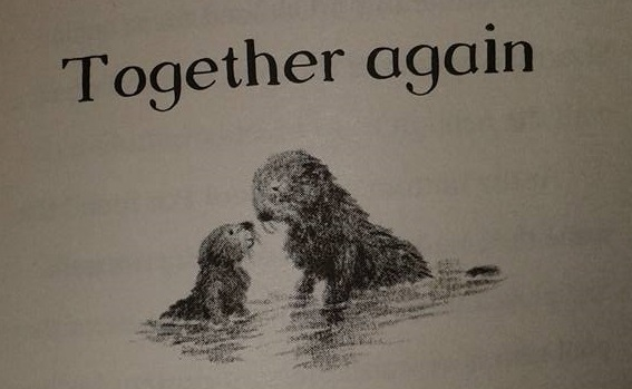 together-again